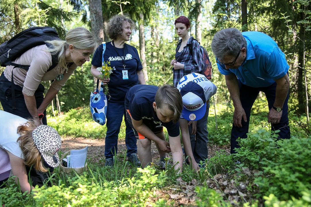 'Maistakaapas, täältä löytyy ketunleipää' - ryhmä Mustikka ensimmäisellä rastillaan. Kuva: Matti Porre/Tasavallan presidentin kanslia