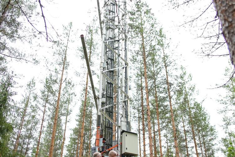 Hiilidioksidimittauksissa on apuna 128 metriä korkea mittausmasto. Kuva: Matti Porre/Tasavallan presidentin kanslia